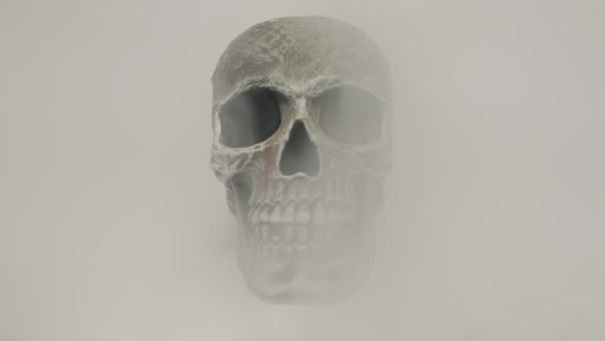 Thick smoke revealing a skull facing the camera, against a clean white background. | Shutterstock HD Video #1024856384