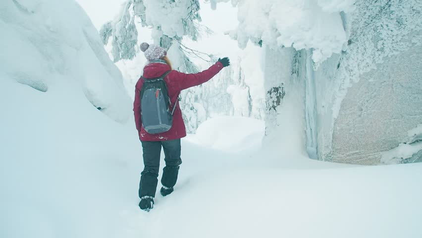 Back view of a young woman in a winter outfit walking winter snowy forest. Hiking girl with backpack spending winter vacation or weekend outdoors. Active lifestyle leisure nature. | Shutterstock HD Video #1024859054
