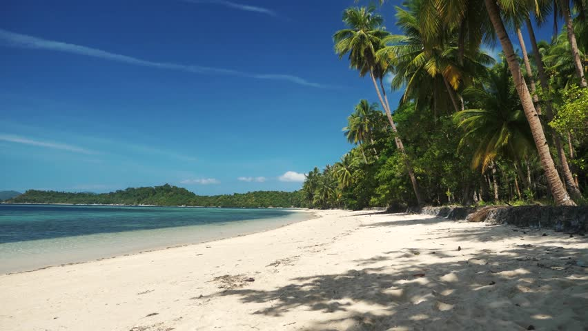 Beautiful tropical beach with white sand clear water and many palm trees in the philippines. | Shutterstock HD Video #1025293994
