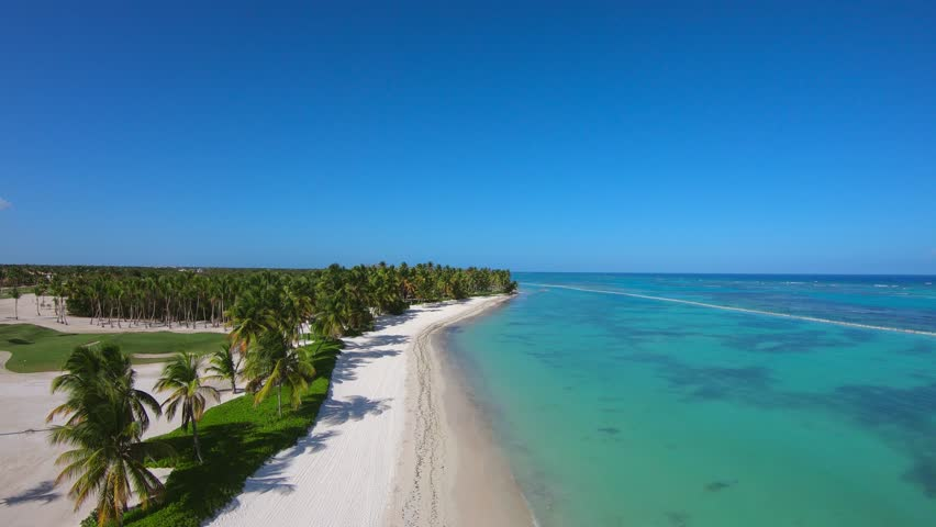 Coastline Caribbean. White sand and a long palm grove. Top view beach island. Little beach and palms background