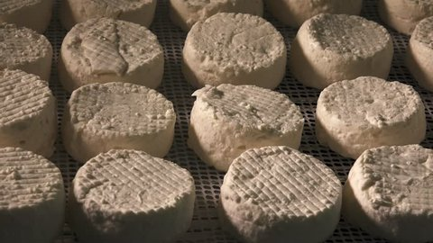 Traditional french goat cheese, France