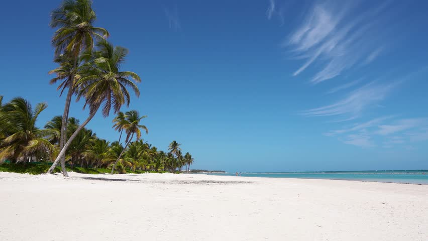 Panorama of a beautiful beach on the islands of Maldives. Wild isolated beach with palm trees and white sand and blue sea and sky / Cirrus clouds and a deserted beach to the horizon. Background | Shutterstock HD Video #1025593844