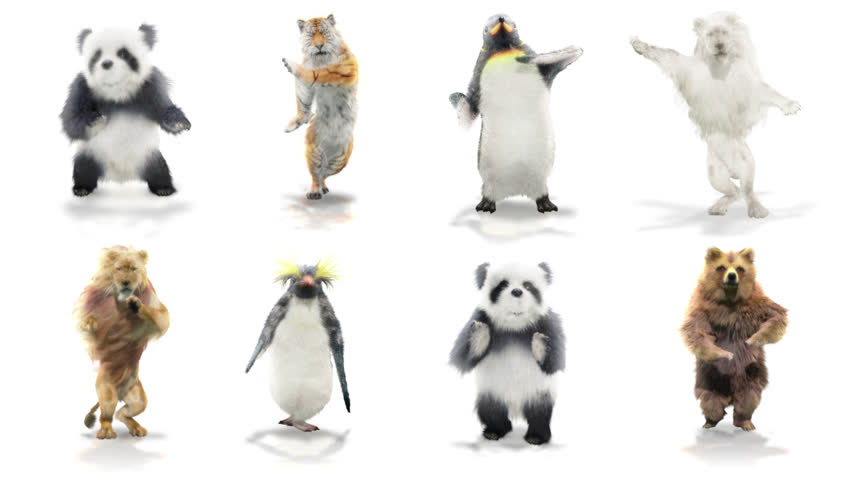 Panda tiger penguin penguins White lion bear Zoo CG fur 3d rendering animal realistic CGI VFX Animation  Loop Crowd dance composition 3d mapping cartoon Motion Background,with Alpha Channel | Shutterstock HD Video #1025660144