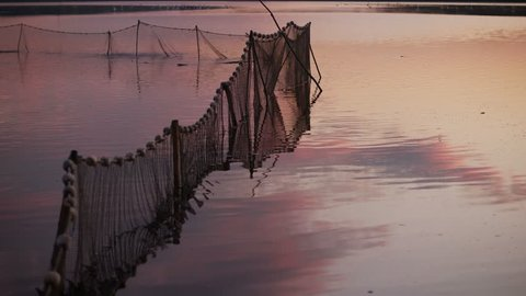 Fishing industry and fishery concept