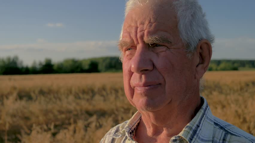Close up portrait of caucasian old man farmer, with wrinkles and gray hair, with calm confident and business look. Stands in field with ripe wheat in light sunset. Camera movement around the head man | Shutterstock HD Video #1025716364