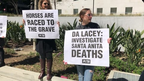 Los Angeles, California -March 14, 2019: PETA animal rights activists protest the death of 22 horses at the Santa Anita Racetrack.
