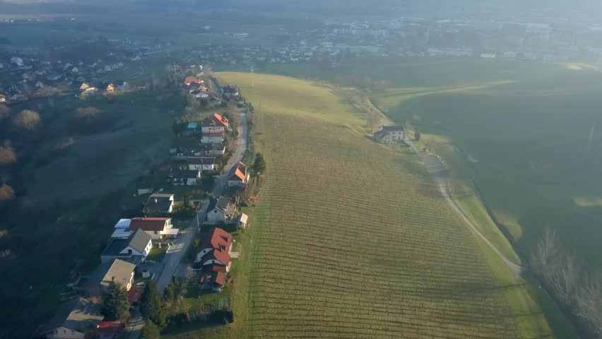 Aerial: Flying over hills filled with wine plantages at beautiful autumn sunset. Filming Slovenian wine making countryside with drone. | Shutterstock HD Video #1025970944