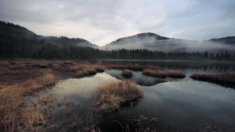 Calm, foggy, cloudy afternoon in boreal forests near Jonsvatnet lake near Trondheim, Norway. Fine, soft light, misty and chilly air. Late autumn time. Small Gjeddvatnet lake.