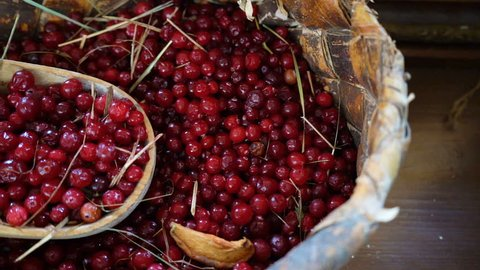 Cranberry berries in a bark basket