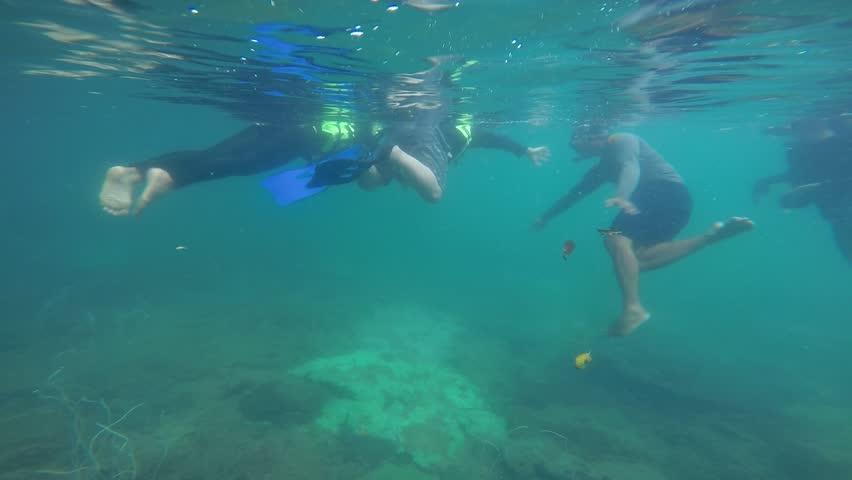 MYANMAR-JANUARY 6 : Tour CocksComb Island, Popular Nature & under water world of Myanmar, January 6, 2015, Myanmar  #1026375584