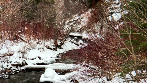 Icy River Runs Through Brown And Green Trees On Cool Winter Day In Ennis Montana