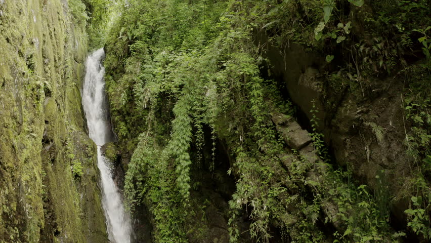 Small water fall in the forrest   Shutterstock HD Video #1026873614
