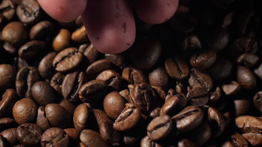 Woman hand pouring coffee beans in slow motion. Close up, 60fps, 4K shot. | Shutterstock HD Video #1026927944
