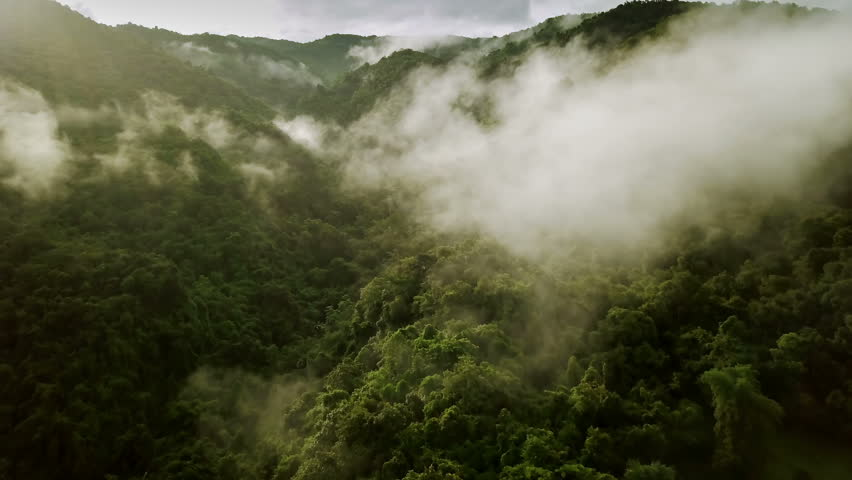 Aerial view flying above lush green tropical rain forest mountain with rain cloud cover during the rainy season on the Doi Phuka Mountain reserved national park the northern Thailand | Shutterstock HD Video #1027367984