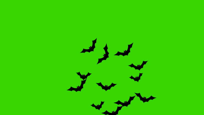 Group of Bats Flying From One Side to Another on a Green Screen  | Shutterstock HD Video #1027552514