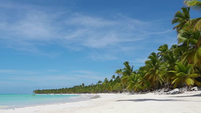 White sand beach at Dominican Republic Isle video 4K. Idyllic palm trees Isle and turquoise Caribbean sea. Atlantic destination white sand beach landscape vacation. Amazing white sand beach background | Shutterstock HD Video #1027663424