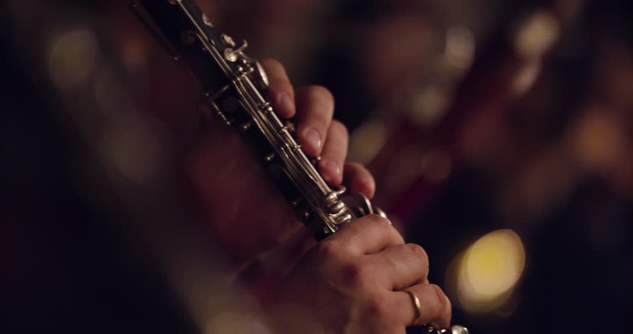 Symphony orchestra brass section   | Shutterstock HD Video #1028408624