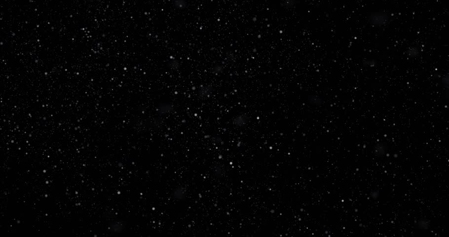 Flying dust particles on a black background #1028814014