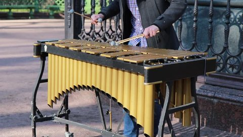 professional street musician playing xylophone in the park