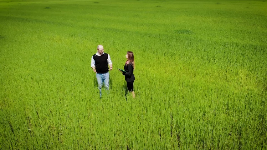 Aerial view of farmer and inspector woman in business suit checks quality of goods in grain fields and write data in documents in folder. Drone shoots video about technology of agricultural food | Shutterstock HD Video #1030193264