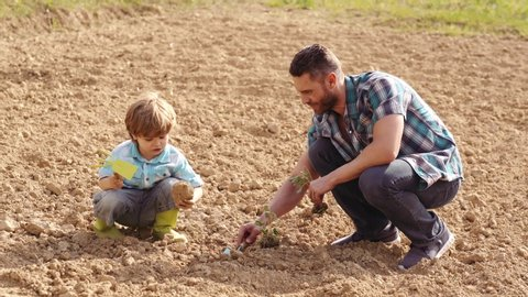 Happy father and son planting on spring field. Garden tools. Eco living - father and son farmer planting in the farm with countryside background. Farming and agriculture cultivation