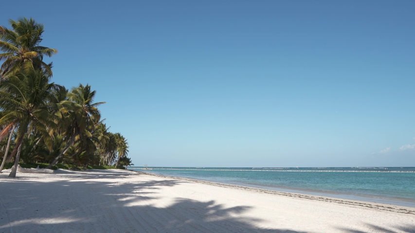 Beautiful beach with white sand and palm trees. Tropical island. The best beaches of the world. Caribbean sea | Shutterstock HD Video #1031275844