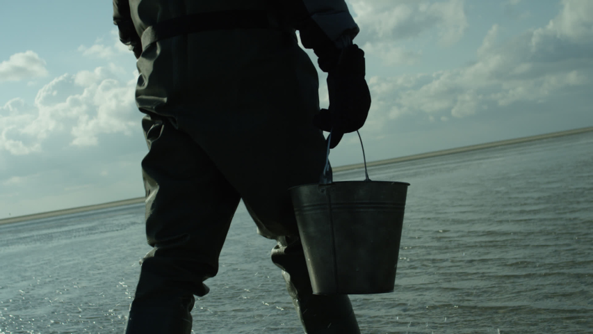 Walking on the bottom of the sea collecting oysters and mussels. | Shutterstock HD Video #1032120554