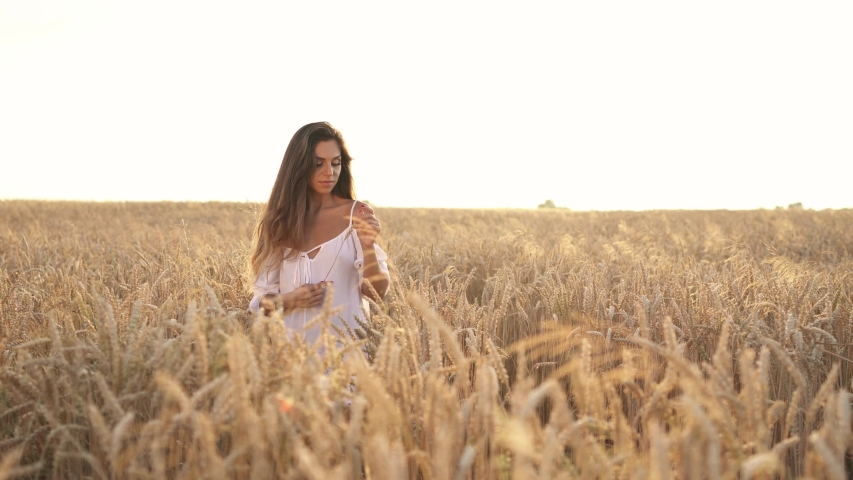 Young romantic woman is dreamily playing with wheat ear in the golden field | Shutterstock HD Video #1032225764