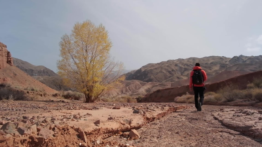 Small Creek Canyon with Red Cliffs named Konorcheck Canyon. Small canyon named Kyzyl Terek can be visited by walk. Great place to camp, hike explore on the way to Issyk Kul lake. | Shutterstock HD Video #1032344564