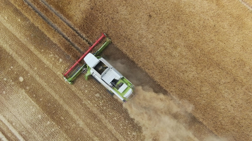 Combine harvester - aerial view one of the biggest combine harvester harvesting golden ripe wheat field in germany    Shutterstock HD Video #1032529274
