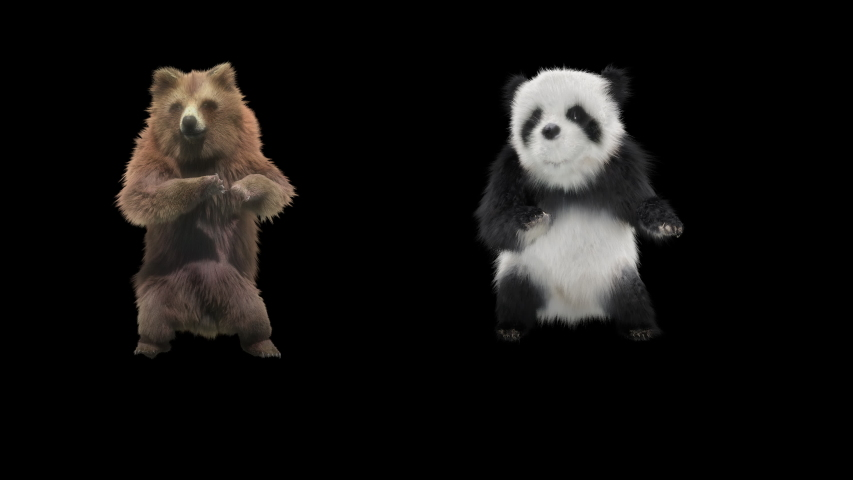 Panda bear Zoo CG fur 3d rendering animal realistic CGI VFX Animation Loop Crowd dance composition 3d mapping cartoon Motion Background,with Alpha Channel   Shutterstock HD Video #1033296674