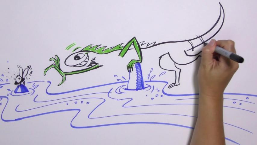 Lizard reaching across a river to catch a fly - Building a Bridge Metaphor - Hand Drawn Animation Explainer Scribing Video | Shutterstock HD Video #1035527954