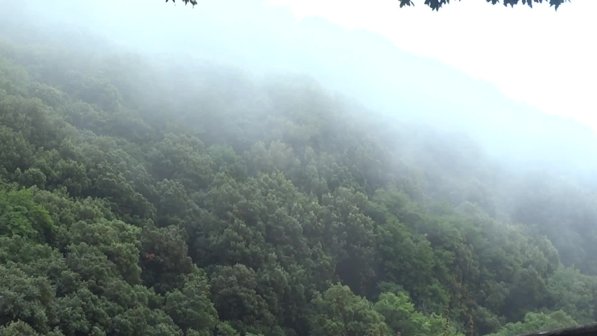 25 seconds of beautiful look into foggy mountain | Shutterstock HD Video #1035656894