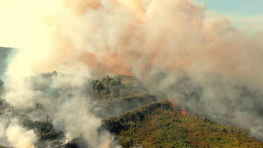 A huge cloud of smoke from a field fire covered the village   Shutterstock HD Video #1036791644