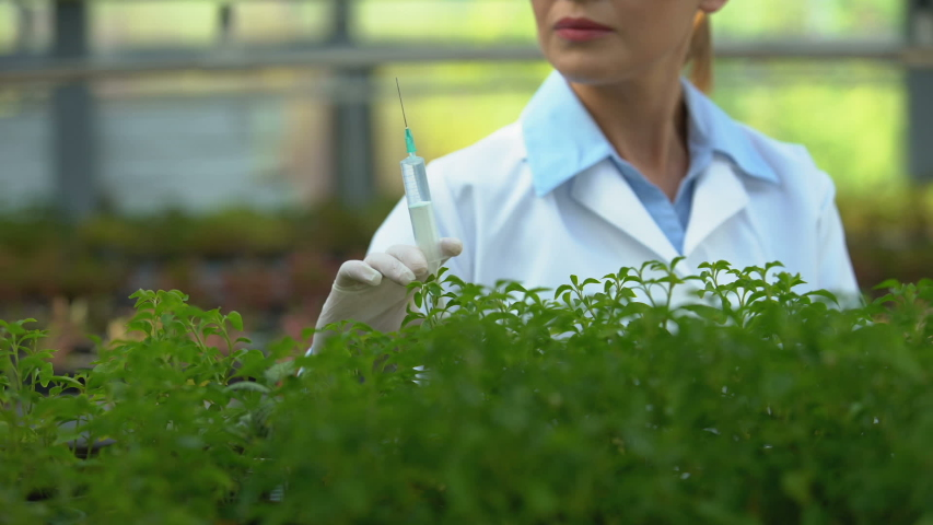 Agricultural scientist injecting fertilizer in soil, testing chemical agent | Shutterstock HD Video #1039991774