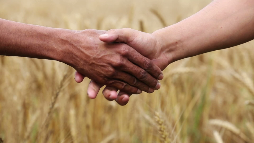 Unrecognizable person shaking hands outdoor in nature. | Shutterstock HD Video #1040520734