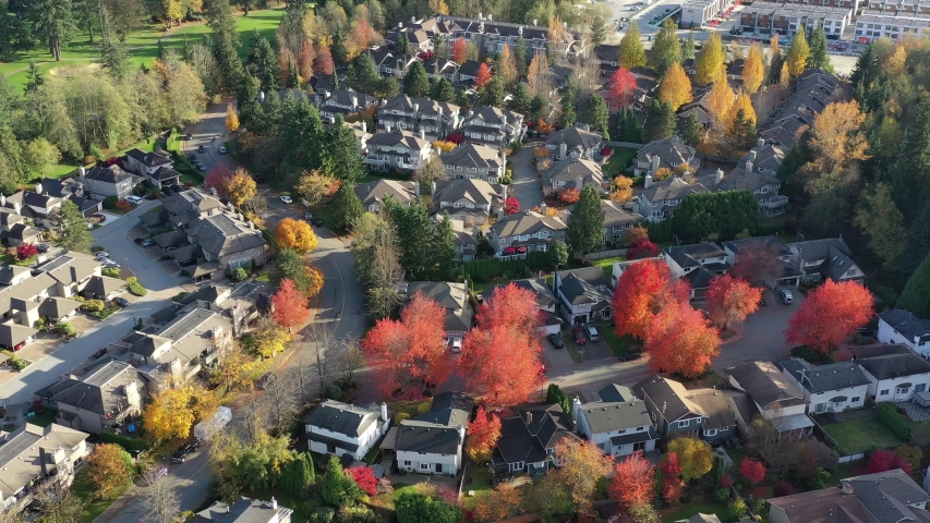 Houses in suburb with Fall Foliage in the north America. Luxury houses with nice yellow and red coloured landscape. Aerial drone view. 4K. | Shutterstock HD Video #1040694704