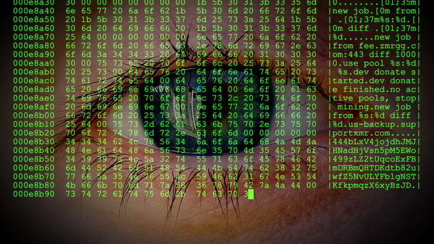 Human eye blinking behind the real-time live code of a Crypto-miner hex dump. | Shutterstock HD Video #1041406744