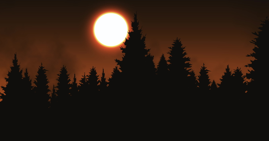 Sunset in the forest pines animation   Shutterstock HD Video #1041461404