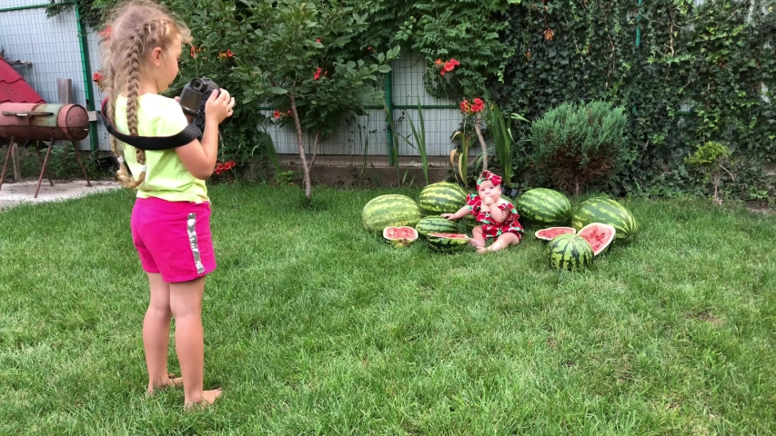 Interesting idea for a photo, a child in watermelons, bloggers, dad blogger takes a photo with children. | Shutterstock HD Video #1042650424
