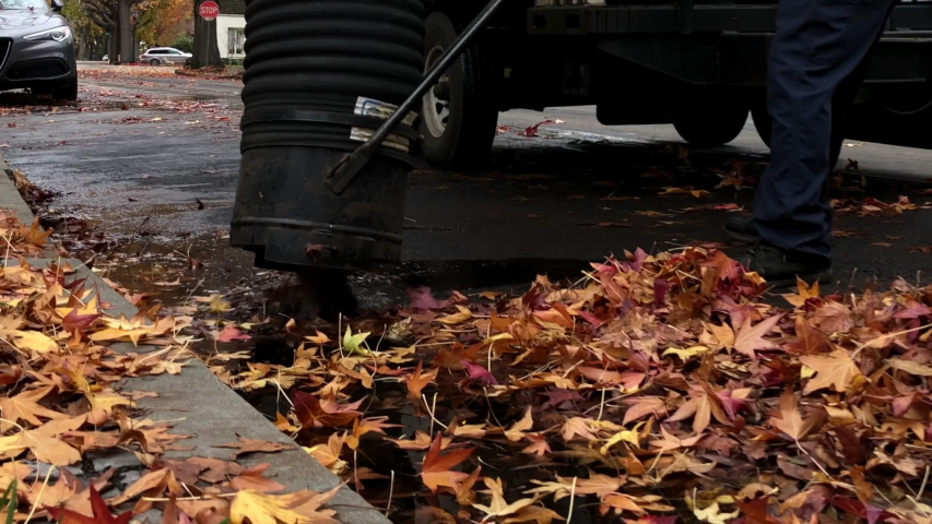 4K HD video of close up on street of workers vacuuming leaves off a street. The City of Alameda's urban forest is given a high priority, including clean up of leaves falling each year. | Shutterstock HD Video #1042803994