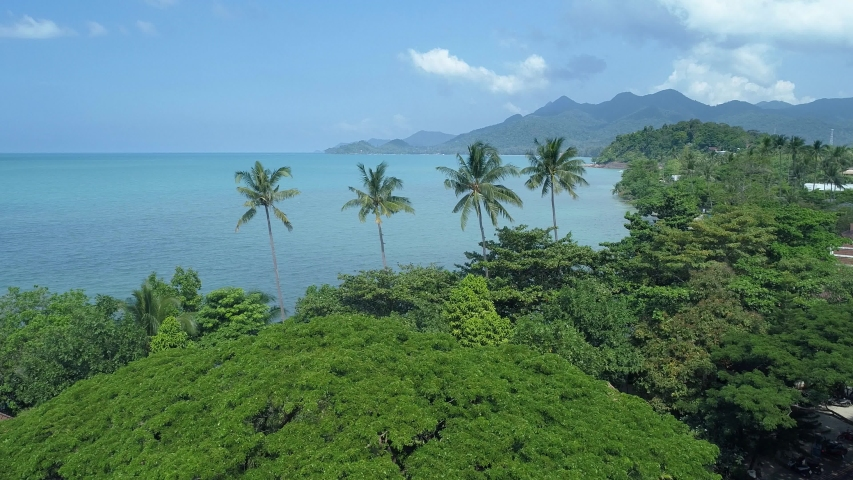 Beautiful Tropical Island with palm trees aerial view | Shutterstock HD Video #1045447204