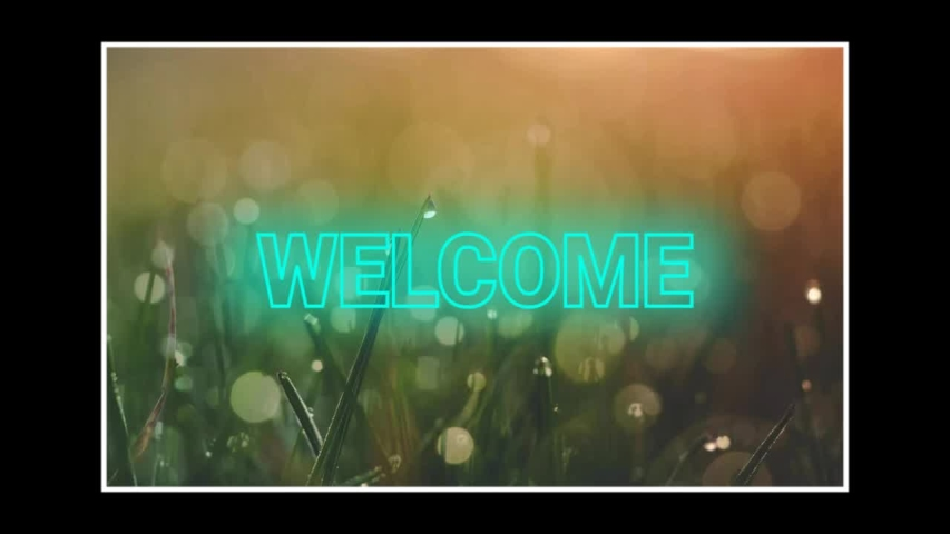 Welcome word greeting style animation | Shutterstock HD Video #1046446384