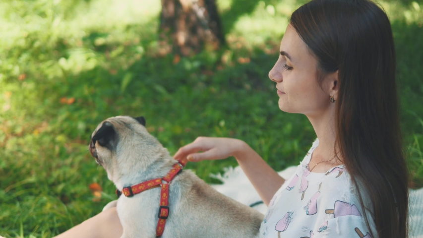 Smiling lady is taking free time with her dog. Woman relaxing in the nature with her little pug dog. Close up. Copy space. 4K. | Shutterstock HD Video #1046771104