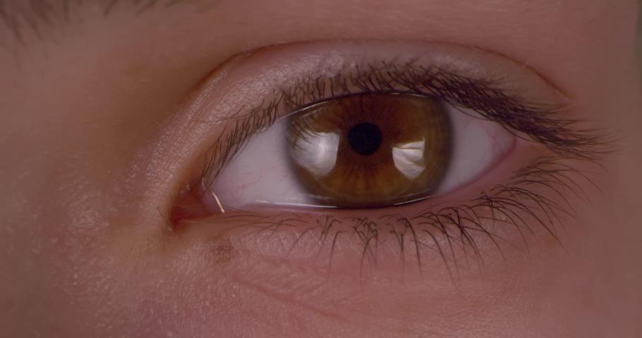 Female green-brown eye.  Extreme macro.   Shutterstock HD Video #1047112204