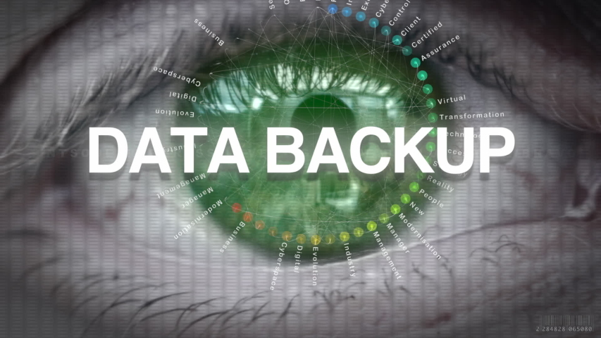 A closeup of an eye and futuristic display with a Data Backup business concept. | Shutterstock HD Video #1047190084