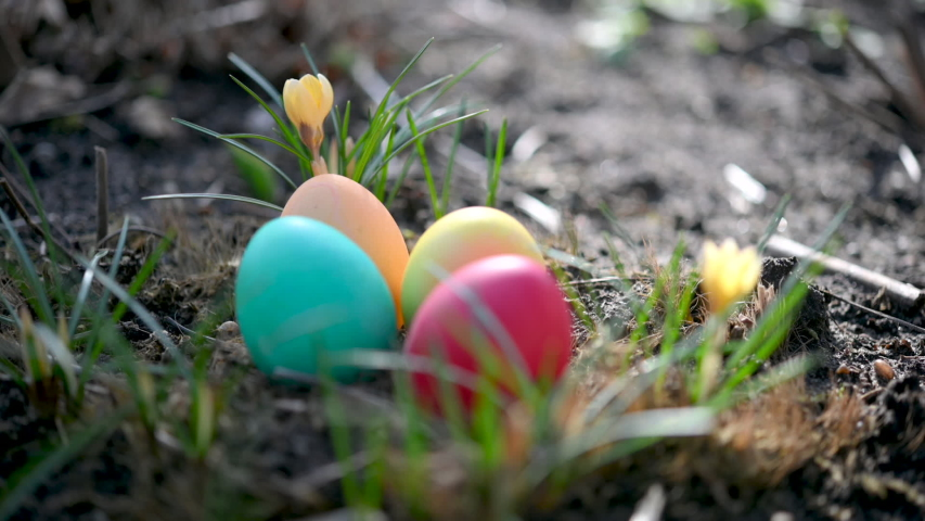Colorful easter eggs lie near blooming flowers in the garden. Easter Egg Hunt. Easter concept background. | Shutterstock HD Video #1047521254