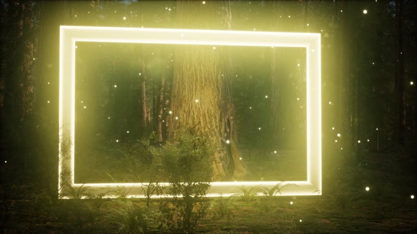 Neon glowing rectangle frame in the night forest | Shutterstock HD Video #1049743444