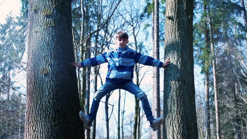 Active lifestyle. The boy climbed between two trees to the top. Physical activity in children. Spending leisure time in the forest. Super abilities of the child. | Shutterstock HD Video #1049757934