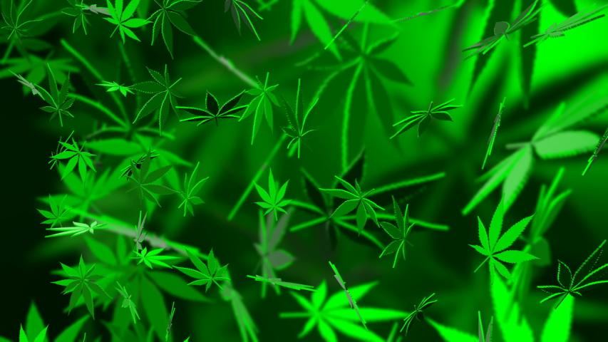 Background of falling marijuana leaves | Shutterstock HD Video #1049877184